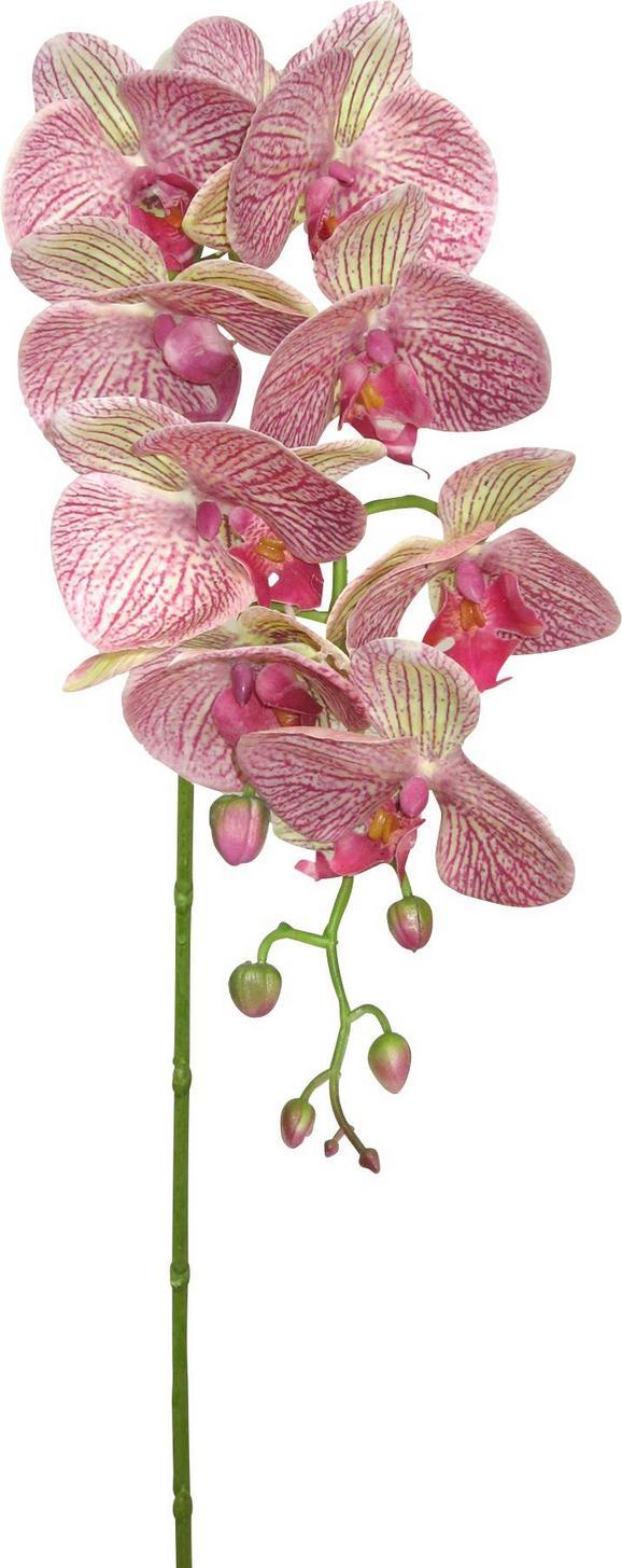 Orhideja Sissi - lila/zelena, Konvencionalno, kovina/umetna masa (87cm)
