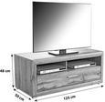 Tv-element Tizio - hrast/srebrna, Moderno, kovina/umetna masa (125/48,4/49,5cm) - Zandiara