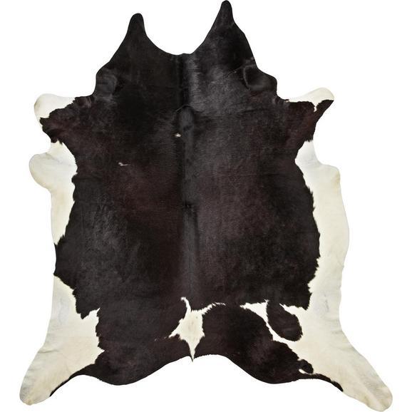 Goveja Koža Christoph -top- - črna/rjava, Moderno, naravni materiali - Mömax modern living