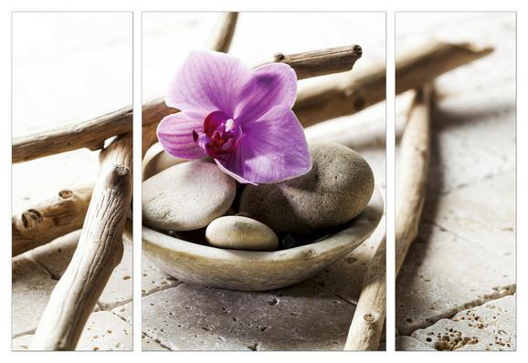Slika Na Platnu Marius - roza/bela, leseni material/tekstil (116/80/1.8cm)
