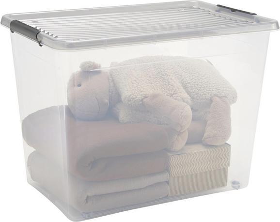 Doboz Tetővel Action - áttetsző, műanyag (57/39/43cm) - MÖMAX modern living