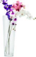 Váza Andrea - Átlátszó, modern, Üveg (17/50cm) - Mömax modern living