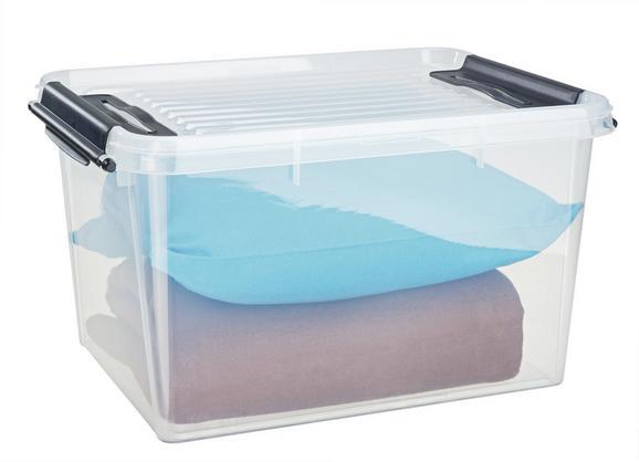 Box mit Deckel Sigfried in Transparent - Transparent, Kunststoff (46/36/24cm) - MÖMAX modern living