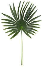 Dekorág Felice - Zöld, romantikus/Landhaus, Műanyag (90 cmcm)