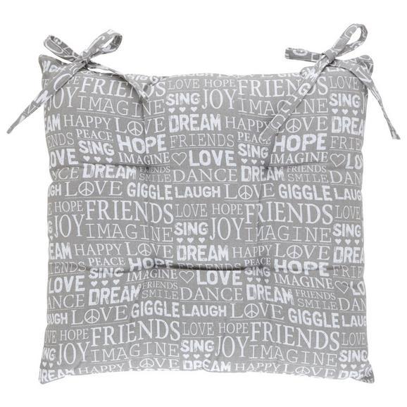 Sedežna Blazina Friends - siva, tekstil (40/40cm) - Mömax modern living