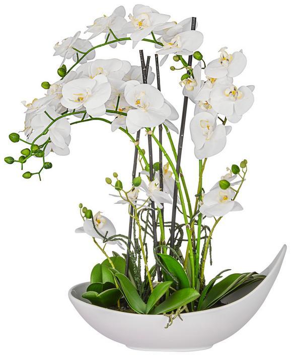 Kunstpflanze Phalänopsis Weiß - Weiß (68 cm)