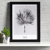 Bild Palm ca.30x40x1,7cm - Schwarz/Grau, MODERN, Kunststoff (30/40/1,7cm) - Mömax modern living