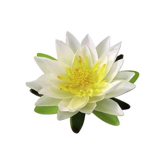 Dekoblume Lotosblüte aus Kunststoff - Multicolor, Kunststoff (15cm) - Mömax modern living