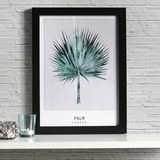 Bild Palm - Schwarz/Grün, MODERN, Kunststoff (30/40/1,7cm) - Mömax modern living