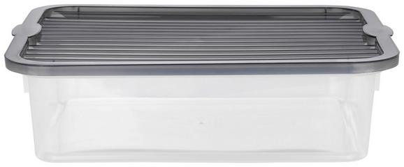 Box mit Deckel Lorry Grau - Transparent, KONVENTIONELL, Kunststoff - PLAST 1