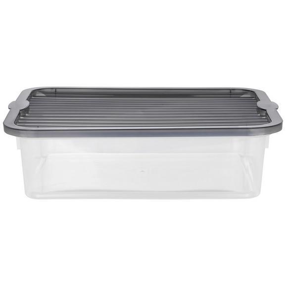 Škatla S Pokrovom Lorry - prosojna, Konvencionalno, umetna masa - Plast 1