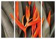 Slika Na Platnu Marius - olivno zelena/oranžna, leseni material/tekstil (116/80/1.8cm)