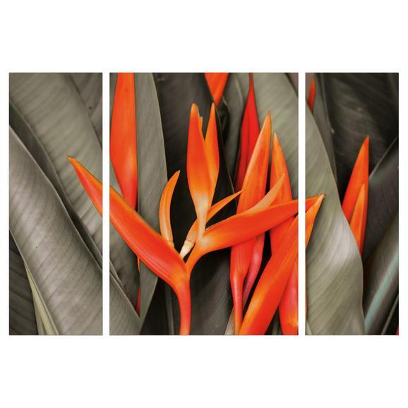 Slika Na Platnu Marius - oranžna/olivno zelena , tekstil/leseni material (116/80/1.8cm)