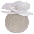Umetna Rastlina Ines - bela, umetna masa (9cm)