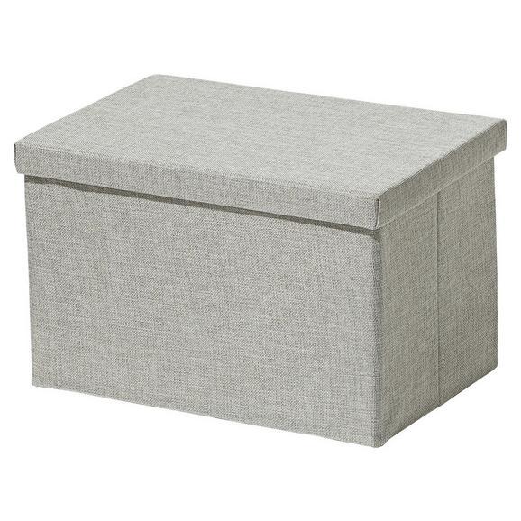 Zložljiv Zaboj Cindy - srebrna, Moderno, papir/umetna masa (38/26/24cm) - Mömax modern living