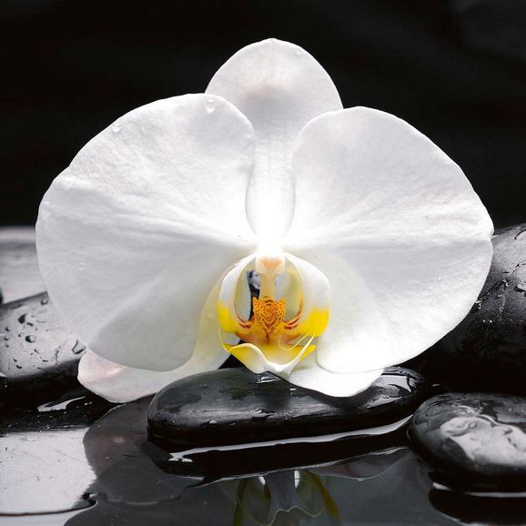 Üvegkép White Balance - Színes, modern, Üveg (30/30/2cm) - Mömax modern living