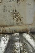 Dekohirsch Skihaserl - Silberfarben/Weiß, MODERN, Metall (15,9/20,3/65,5cm) - Mömax modern living