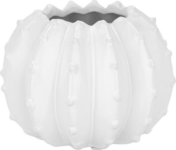 Vaza Colon - bela, Trendi, keramika (13,5/13,5/9,8cm)