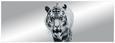 Ogledalo Tiger - črna, Moderno, steklo (50/140/0,3cm)