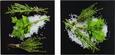 Glasbild Modern Kitchen, ca.20x40x1,7cm - Multicolor, MODERN, Glas (20/40/1,7cm) - Mömax modern living