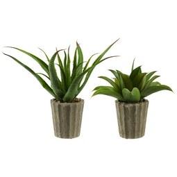Kunstpflanze Agave - Kunststoff (15/50cm)