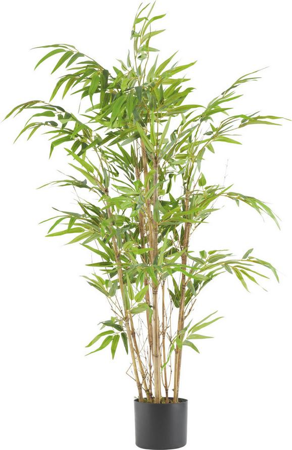 Umetna Rastlina Noah - zelena/rjava, umetna masa (120cm) - Mömax modern living