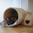 Fleecedecke Pet in Beige ca. 120x150cm - Beige, Textil (120/150cm) - Mömax modern living