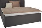 Oblazinjena Postelja Monaco - siva/črna, Konvencionalno, umetna masa/leseni material (160/200cm) - Premium Living