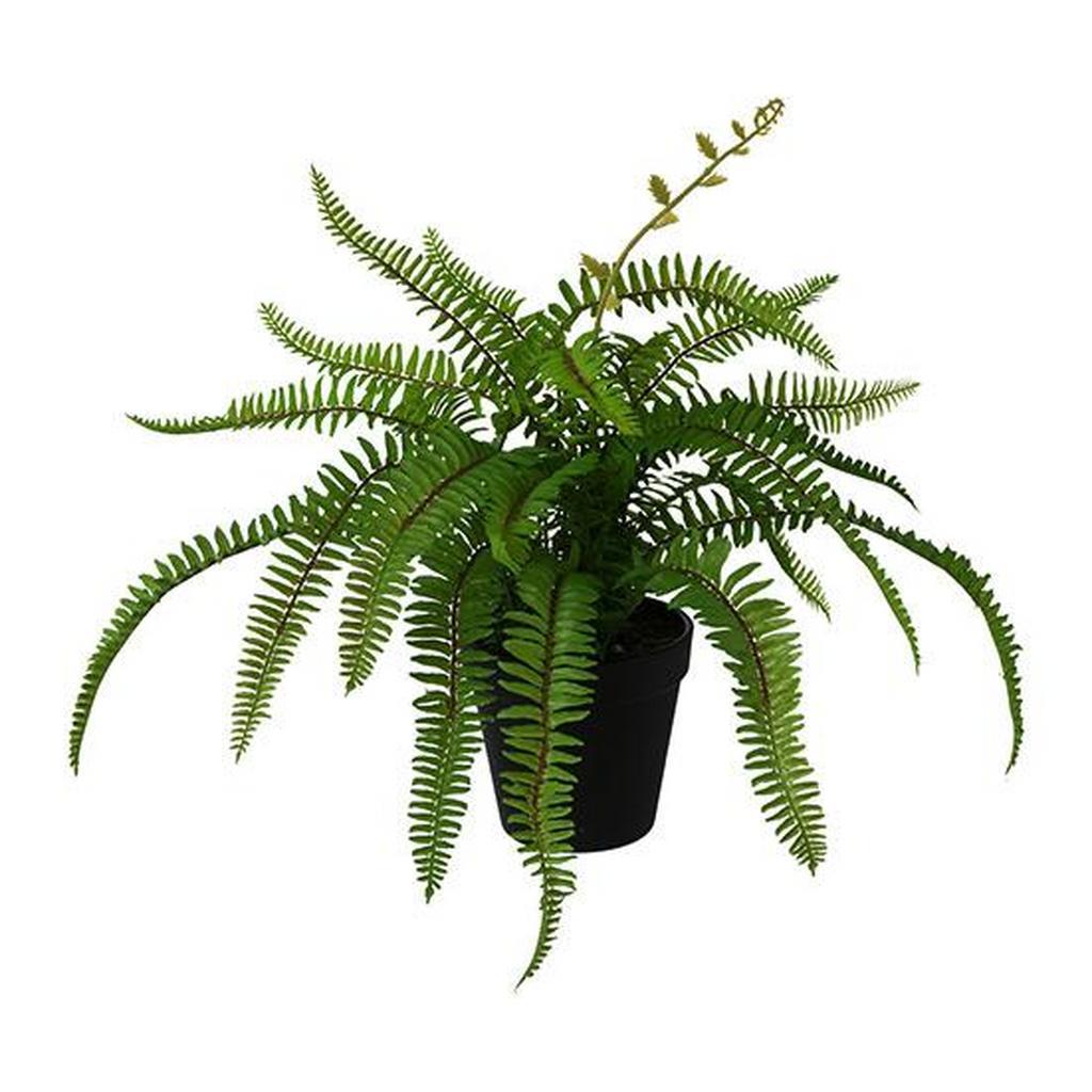 Kunstpflanze Nephrolepisfarn in Grün