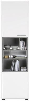 Vitrine Verschiedene Farben - Edelstahlfarben/Schwarz, MODERN, Holzwerkstoff/Kunststoff (57/200/42cm) - Premium Living