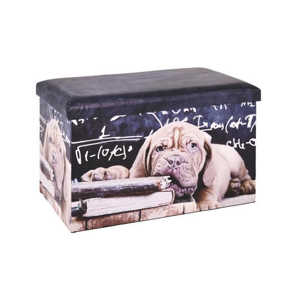 Sitzbox Bunt - Multicolor, MODERN, Karton (65/40/40cm) - Mömax modern living