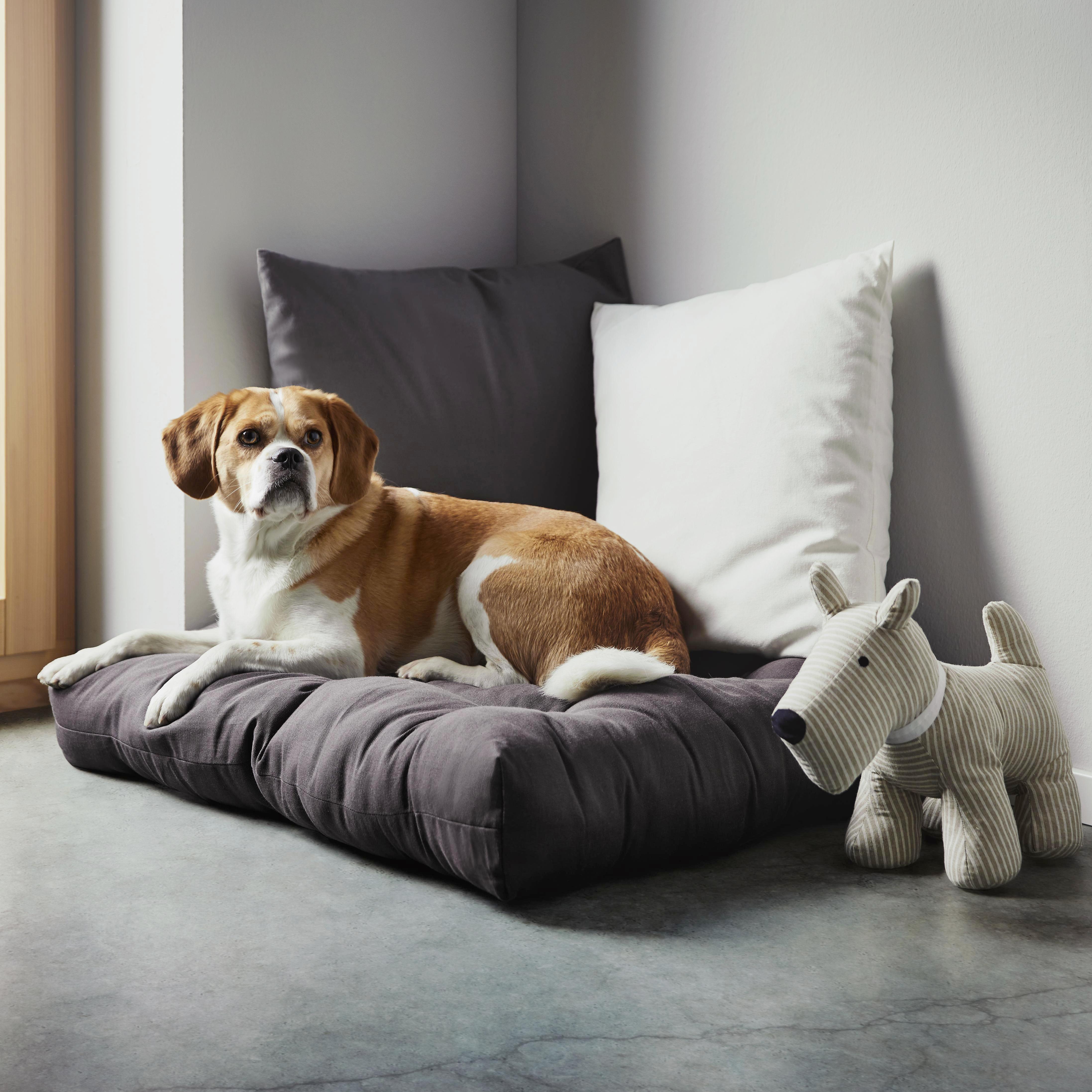 Zierkissen Bigmex in Weiß, ca. 60x60cm - Weiß, Textil (65/65cm) - MÖMAX modern living