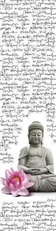 Panelna Zavesa Little Buddha - roza/črna, Trendi, tekstil (60/245cm) - Mömax modern living