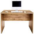 Masă De Birou Profi - culoare lemn stejar, Modern, compozit lemnos (120/76cm) - Ombra